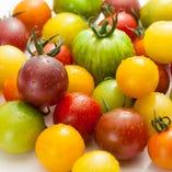 兵庫県の契約農家さんのトマト【兵庫県】