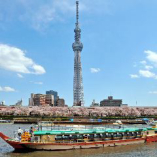 隅田川の桜クルーズ(貸切船 1隻66,000円~)期間3月20日~4月10日(期間は桜の状態により前後します)