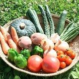 提携農家からの新鮮野菜を仕入れふんだんに使用【北海道紋別市新港町】