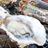 殻付き牡蠣【岡山県】
