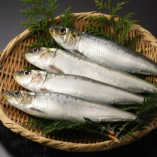 市場直送の新鮮な海鮮・魚介類♪【鹿児島県】