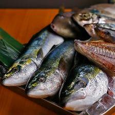 舞鶴漁港直送!いきいき♪旬鮮魚