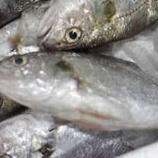 魚・野菜・塩