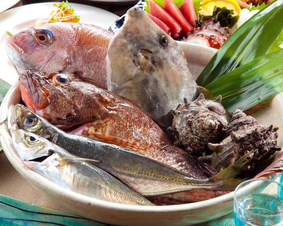 三浦半島の地魚を。