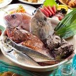 佐島の魚介たち