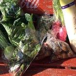 里芋、さつまいも などなど、旬の取れたて野菜
