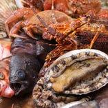 鮑、国産伊勢海老、フカヒレなど高級食材や旬食材を贅沢に使用