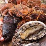 大阪中央市場の鮮魚、長崎対馬産の鮑、三重熊野灘の伊勢海老など厳選食材を使用。