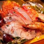 全国の167ケ所の漁港から季節の鮮魚を毎日直送!!【千葉県】