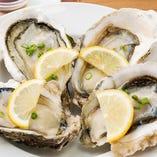 北海道厚岸産や兵庫産の生牡蠣。ミルキーな味わいが格別!