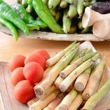 季節の京野菜や各地の旬野菜も豊富。繊細な一皿で是非。