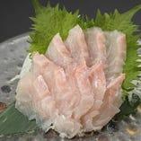鮮魚は地元沼津港から直送で仕入れます
