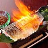 炙り金華〆鯖刺し。あぶらの乗った鯖をさっと酢締めに