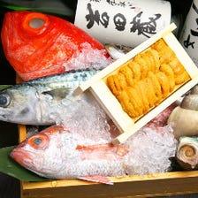 とにかく旬の獲れたて魚介類が豊富!