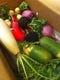 産直の野菜達。