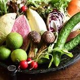 新鮮な季節野菜をふんだんに使用