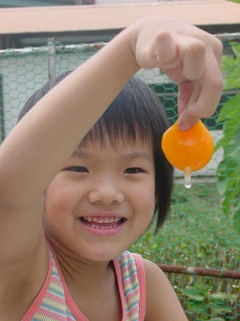 農林水産大臣賞受賞日本一の美豊卵